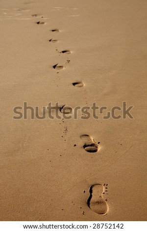 human footprints in the wet sand