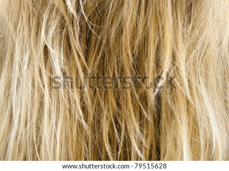 Human Hair texture