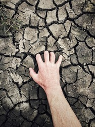 Human hand digging for water in cracked and scorched earth in a drought concept with copy space