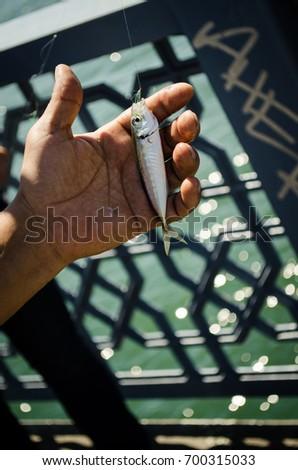 Human Hand, Fishing Industry, Fisherman, Commercial Fishing Net, Laborer Stok fotoğraf ©