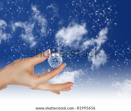 human hand holding a dandelion against blue sky with white clouds