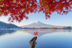 Human hand holding a red maple leave with mountain Fuji. Fall foliage in colorful autumn season near Fujikawaguchiko, Yamanashi. Five lakes. Trees in Japan with blue sky. Nature landscape background