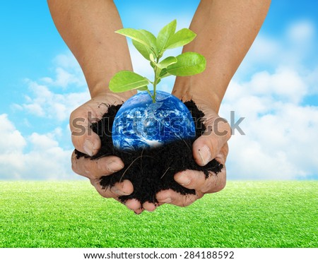Human hand holding global in soil with little green tree for World Environment Day concept Elements of this image furnished by NASA