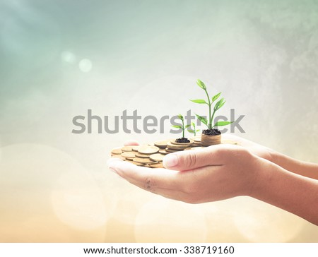 Human hand holding golden coins with young plant over blurred beautiful city sunset background. Seedling in coins Money LIT Investment Saving Banking Insurance Agent Fund ROI CSR Finance Time concept