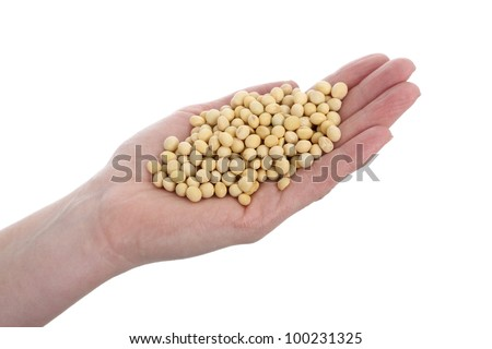 Human hand holding heap of soy bean, isolated on white