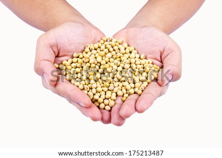 Human hand holding ripe soy bean on isolated background
