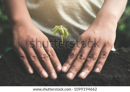Human hand planting little green sprout , concept save the world.