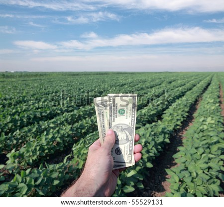 Human hand with dollar banknote and soy field