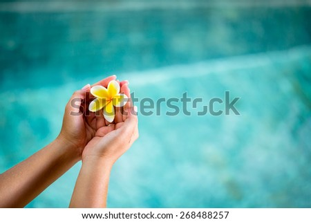 Human hands holding Plumeria flower over water