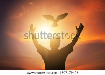 Human hands open palm up worship. Eucharist Therapy Bless God Helping Repent Catholic Easter Lent Mind Pray. Christian Religion concept background. fighting and victory for god, Man freedom with dove. Photo stock ©