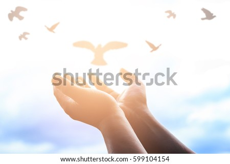 Human hands open palm up worship. Eucharist Therapy Bless God Helping Repent Catholic Easter Lent Mind Pray. Christian concept background. fighting and victory for god - Shutterstock ID 599104154