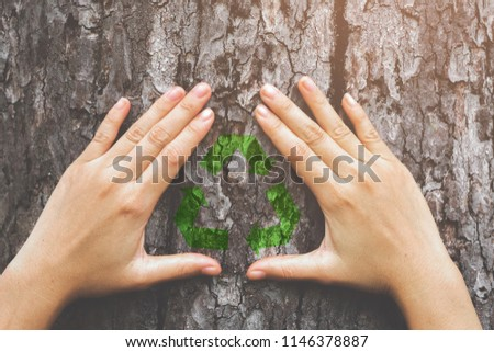 Human hands showing Garbage recycling icon symbol on big tree with fingers extended, symbolizing the connection between humans and nature concept.