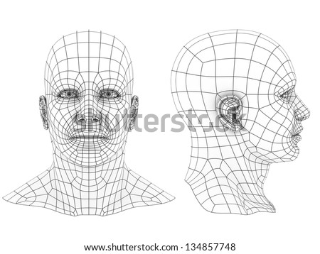 human head 3d wireframe front and side view