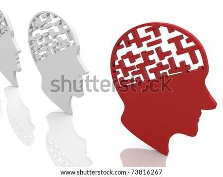human head with the brain in the form of the labyrinth are a number of