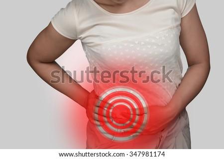 Human lumbar pain from kidney disease.