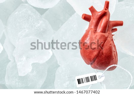 Human organ traffic, internal organs black market and illegal medical procedure concept theme with frozen donor heart with tag and barcode attached, preserved for transplant surgery with copy space