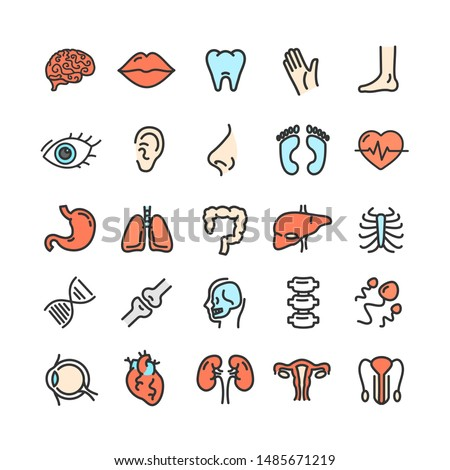 Human Organs Color Thin Line Icon Set Include of Spine, Bone, Nose and Hand. illustration of Organ