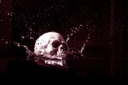 Human plastic skull falling in water isolated on black background.Halloween image