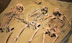 Human Remains in Archeological Site