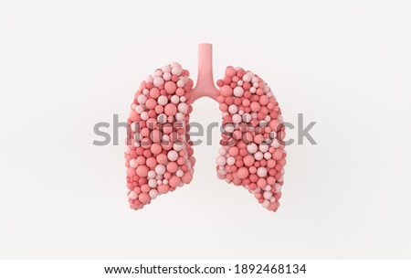 Human respiratory system anatomy concept. Healthy lungs. World Tuberculosis day, lung cancer day. 3d rendering Stock photo ©