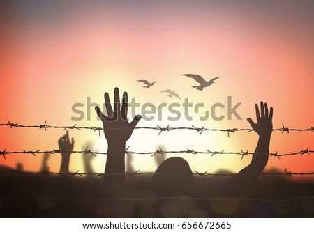 Human right day concept: Silhouette refugee hands raising and barbed wire on autumn sunset background #656672665