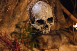 Human scull hanging on rope. Death symbol. Fear and horror concept. Occult decoration for