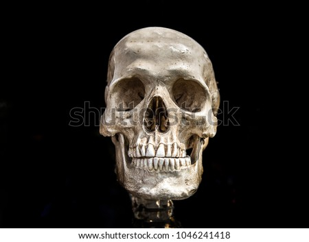 human scull on black isolate show history of human anatomy concept