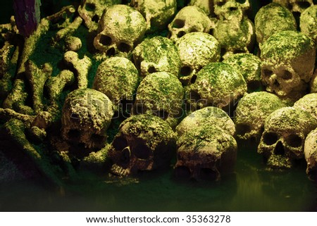 Human sculls, bones and skeletons in green mist