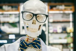 Human skeleton. Male skull portrait wearing glasses, bow tie and white doctor suit. Anatomy medicine health and science