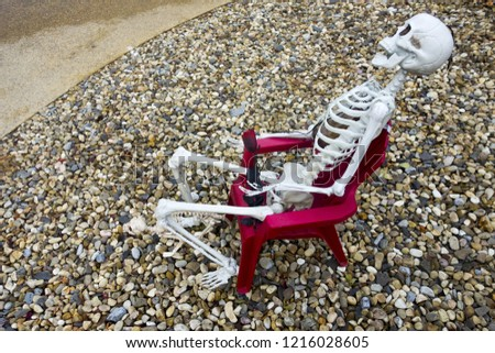 Human Skeleton Model sitting in Red Chair Halloween Decoration #1216028605