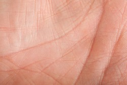 Human skin, closeup of the inner surface of a male hand