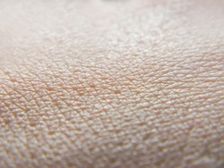 Human skin. Macro photo. Close up.