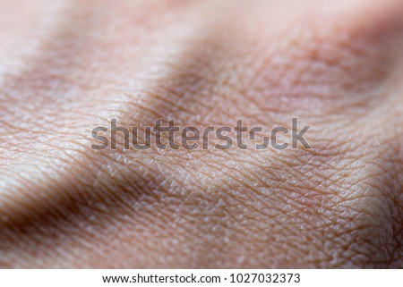 Human skin pattern dry, convex from the veins, Close up macro detail Stock photo ©