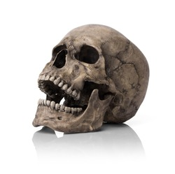 Human skull, isolated