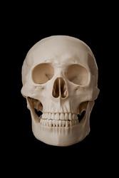 Human skull, isolated on black background