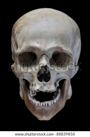 Human skull on a black background.