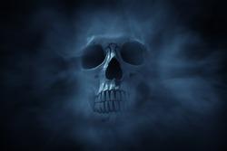 Human skull on dark background
