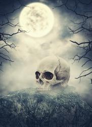 Human skull on the stone against spooky sky. Halloween scene