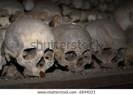 stock photo human skull pile with bones on dark background