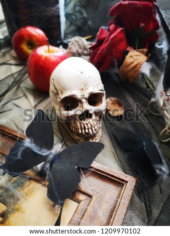Stock Photo human skull skeleton placed on wooden floor with apple butterfly concept of death and Halloween.