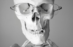 Human skull wearing glasses. Head. Face. Grey background