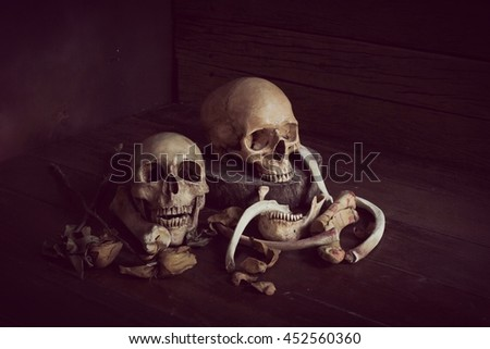 Still life photography with old skulls in dark vintage tone Images