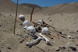 Human skulls and bones in the Nazca sand desert in Ica-PERU