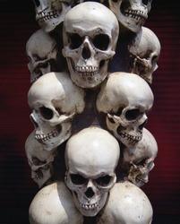 Human skulls close-up. Halloween Dia De Los Muertos Celebration. Background.