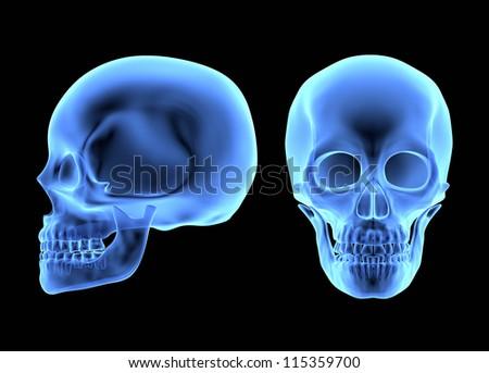 Human Skulls isolated on black. X-ray effect