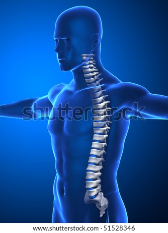 Human spine concept isolated
