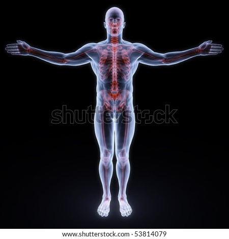 human x-ray with red sceleton