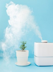 humidifier for better breathing, humidification and care of flowers, increase humidity in the room for human health. Air purifier, aromatherapy, plant care, watering flowers