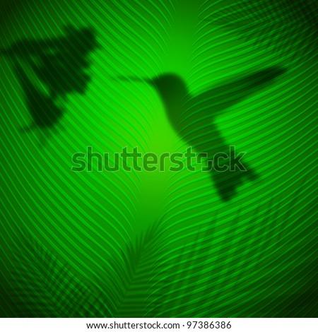 humming bird shadow on banana leaf in the tropical sun