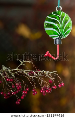 Hummingbird feeder isolated against a natural dark warm color blurred background with a branch of red berries.